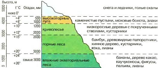 Высотная поясность Южной Америки География Реферат доклад  Рис 123 Высотная поясность Анд