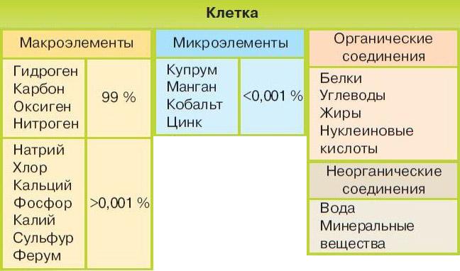 Химический состав клетки биология реферат 9194